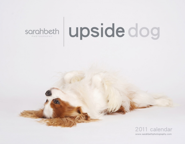 2011 calendar, upside down dogs