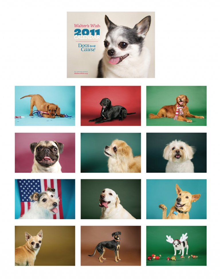 2011 calendar, pet photography, dogs