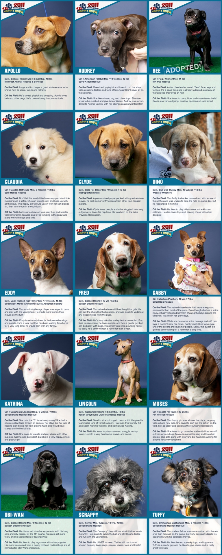 minneapolis puppy rescue, trading cards