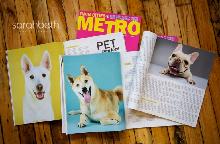 commercial magazine pet photos