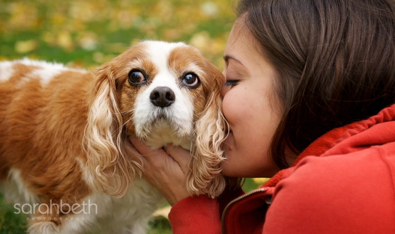 spaniel and owner
