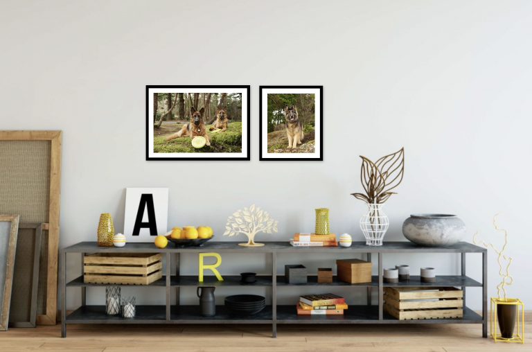 30e73d18a311 Decorating Your Home With Custom Artwork of Your Pets » Minneapolis ...